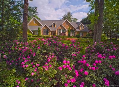 Hendersonville NC Single Family Home For Sale: $3,600,000