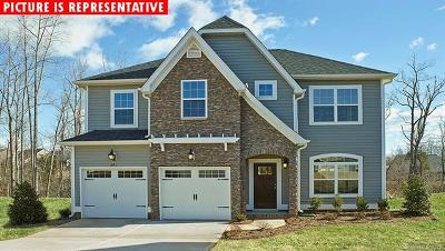 Cabarrus County Single Family Home For Sale: 5892 White Cedar Trail #Lot 62