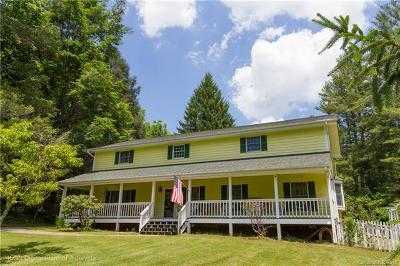 Asheville Single Family Home For Sale: 261 Pinners Cove Road