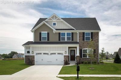 Gastonia Single Family Home For Sale: 3453 Canyon Live Oak Court #246