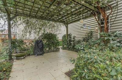 Single Family Home For Sale: 14015 Ballantyne Meadows Drive