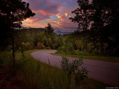 Asheville Residential Lots & Land For Sale: 187 Starling Pass #102