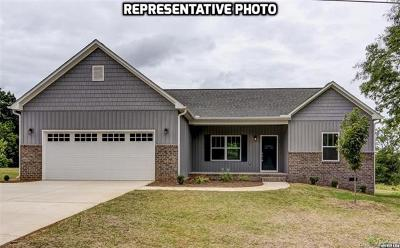 Statesville Single Family Home For Sale: 196 Watering Trough Road #8