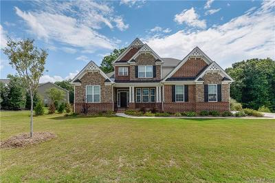 Tega Cay Single Family Home For Sale: 913 Solandra Way