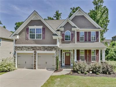 Lake Wylie Single Family Home For Sale: 617 Cedar Trace Drive