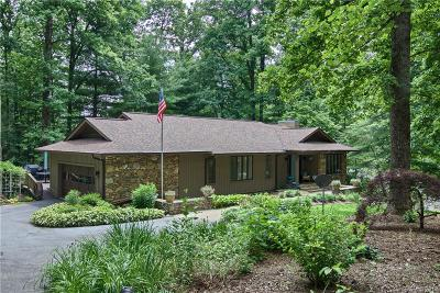 Hendersonville Single Family Home For Sale: 38 Foxglove Road