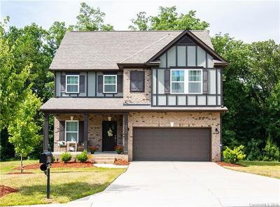 Mint Hill Single Family Home For Sale: 4012 Martele Drive