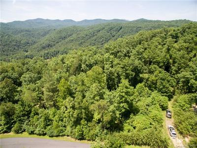 Marshall NC Residential Lots & Land For Sale: $255,000