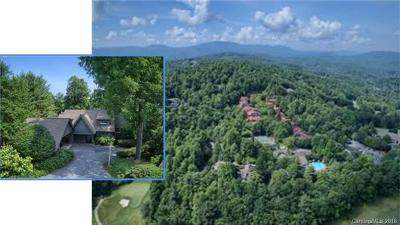 Hendersonville Condo/Townhouse For Sale: 104 Tulip Poplar Lane #Cottage