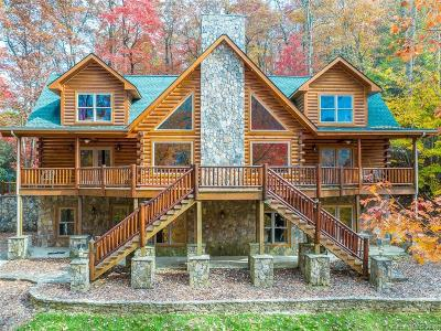 Single Family Home For Sale: 475 South Toe River Road