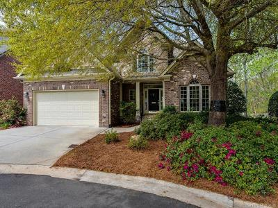 Charlotte Single Family Home For Sale: 10541 Newberry Park Lane