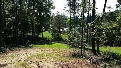Buncombe County Residential Lots & Land For Sale: 23 Acadia Drive #Lot V-66