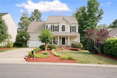 Rock Hill Single Family Home For Sale: 1317 Shimmer Light Circle