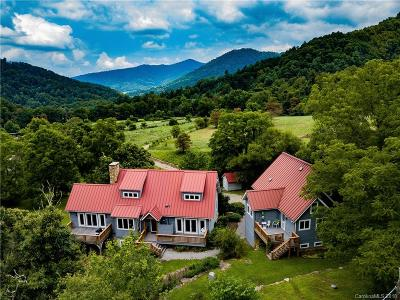 Weaverville Multi Family Home For Sale: 371 Ox Creek Road