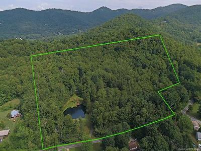 Asheville Residential Lots & Land For Sale: 136 Upper Grassy Branch Road