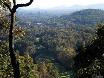Asheville Residential Lots & Land For Sale: 100 Robinhood Road