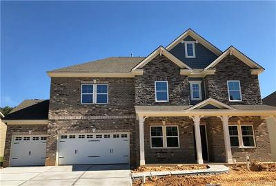 Fort Mill Single Family Home For Sale: 1575 Afton Way #207