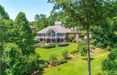 Asheville Single Family Home For Sale: 242 S Plains Drive