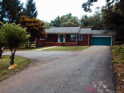 Arden Single Family Home For Sale: 879 Glenn Bridge Road SE