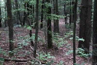 Buncombe County, Haywood County, Henderson County, Jackson County, Madison County, Polk County, Rutherford County, Transylvania County Residential Lots & Land For Sale: 4 Tip Top Road #4