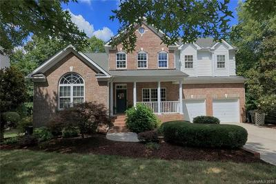 Huntersville Single Family Home For Sale: 10205 Lafoy Drive
