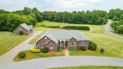 Catawba County Single Family Home For Sale: 1860 Thomasville Road
