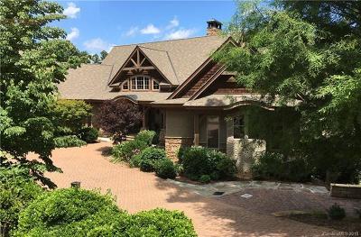 Asheville Single Family Home For Sale: 317 Braeside Court