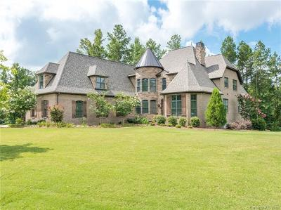 Fort Mill Single Family Home For Sale: 4010 Country Overlook Drive