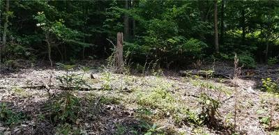 Haywood County Residential Lots & Land For Sale: Dry Branch Trail #C-3