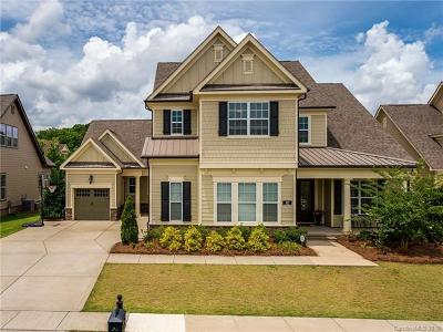 Fort Mill Single Family Home For Sale: 313 Newington Court