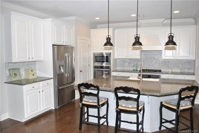 Fort Mill Single Family Home Under Contract-Show: 133 Helton Lane