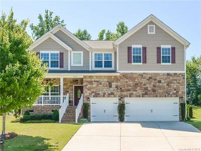Clover, Lake Wylie Single Family Home For Sale: 1409 Donegal Drive
