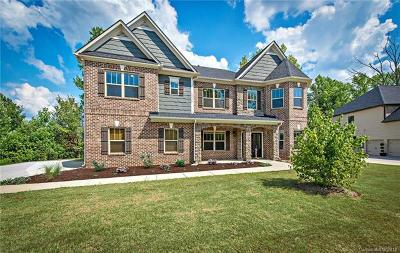 Huntersville Single Family Home For Sale: 13330 Crystal Springs Drive