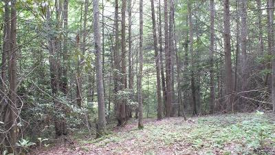 Hot Springs NC Residential Lots & Land For Sale: $35,000