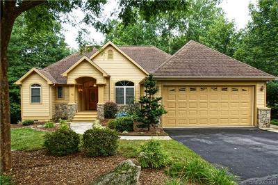 Hendersonville Single Family Home For Sale: 66 S Kuykendall Court
