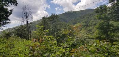 Buncombe County, Haywood County, Henderson County, Madison County Residential Lots & Land For Sale: 2310 Fie Top Road