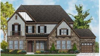 Fort Mill Single Family Home For Sale: 461 Brier Knob Drive #331