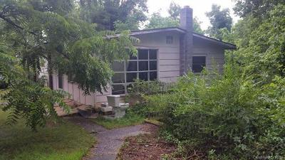 Asheville Single Family Home For Sale: 21 Busbee View Road