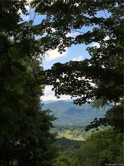 Haywood County Residential Lots & Land For Sale: McGuires Ridge #321 &
