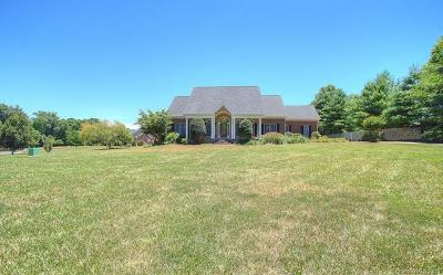 Single Family Home For Sale: 1304 Forest Bluff Drive