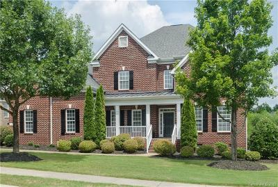 Charlotte Single Family Home For Sale: 16702 Crosshaven Drive