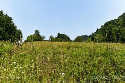 Marshall NC Residential Lots & Land For Sale: $300,000