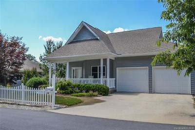 Hendersonville Single Family Home For Sale: 194 Carriage Summitt Way