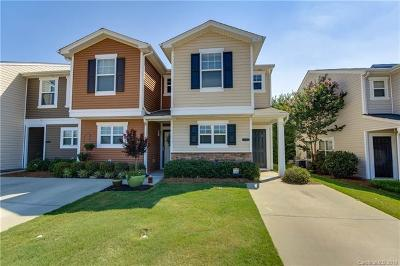 Fort Mill Single Family Home For Sale: 746 Elders Story Road