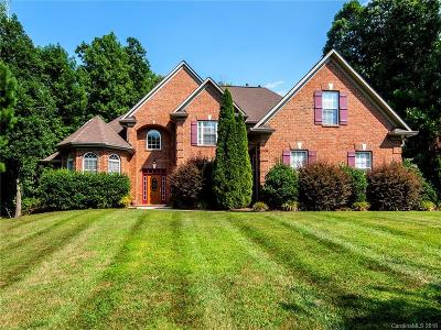 Lake Wylie Single Family Home For Sale: 256 Catawba Crest Lane