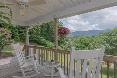 Black Mountain Single Family Home For Sale: 91 Shumate Road