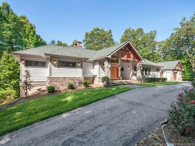 Hendersonville Single Family Home For Sale: 528 Patterson Road