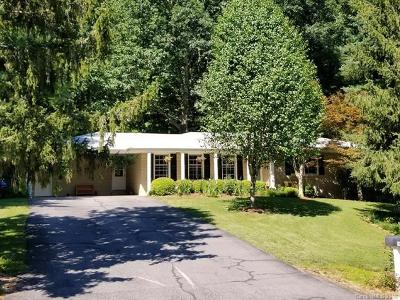 Asheville Single Family Home For Sale: 96 Alpine Way