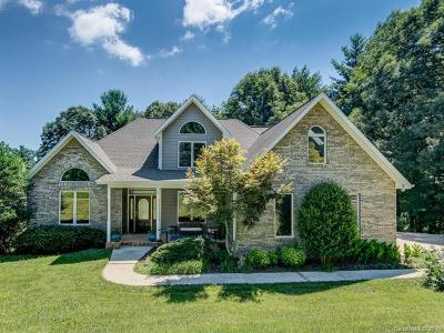 Asheville Single Family Home For Sale: 5 Danner Lane