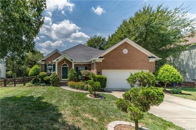 Charlotte Single Family Home For Sale: 5314 McChesney Drive